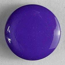 Dill Knöpfe Pa, Pes. aubergine, violett LZ 3 Wo.